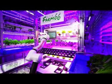 Farm66 & Inovo Robotics - Farming of the future